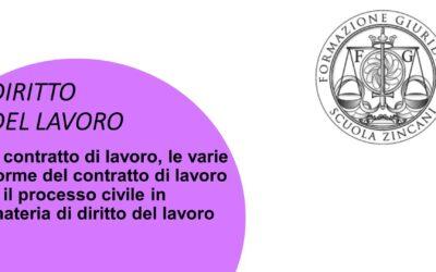 Il contratto di lavoro, le varie forme del contratto di lavoro e il processo civile in materia di diritto del lavoro